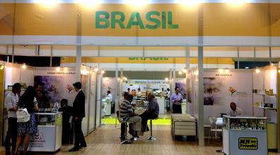 Brasil na Apimondia: empresas apícolas fecham negócios no valor de US$ 5,4 mi